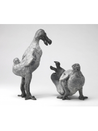 Dodos by Jonathan Kingdon