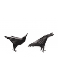 Ravens by Terence Coventry