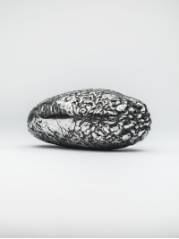 Accretion by Peter Randall-Page
