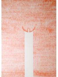 Pink II by Lorraine Robbins