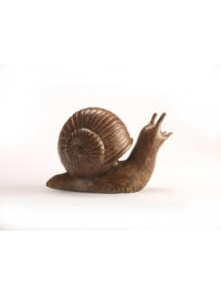 Optimistic Snail by Anita Mandl