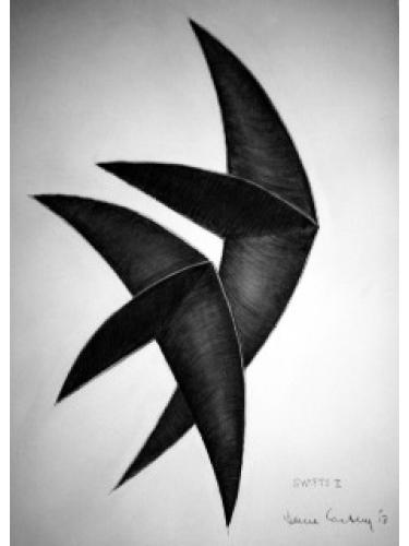 Swifts II