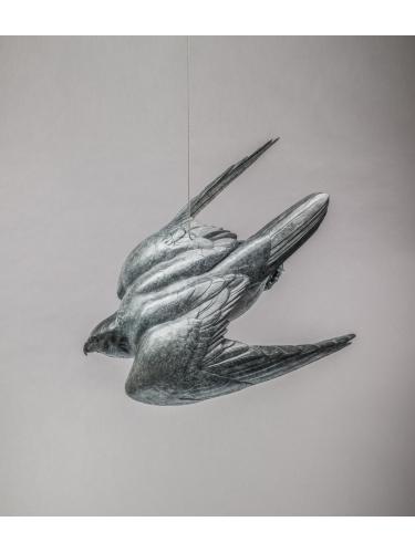 Peregrine II - Flying Free