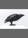 Raven I by Terence Coventry