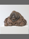 Sumatran Orangutan by Nick Bibby