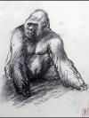 Jambo Squatting by Ralph Brown